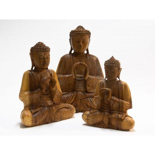 309118 Fa Buddha