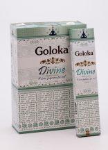 501016 GOLOKA divine
