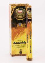 501027 DARSHAN kanishka