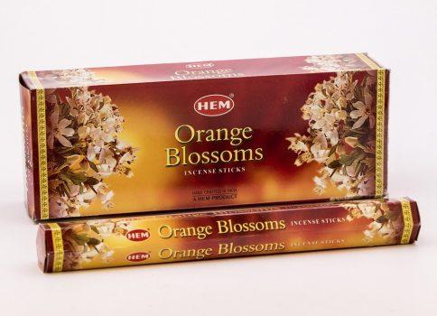 501036 HEM orange blossoms